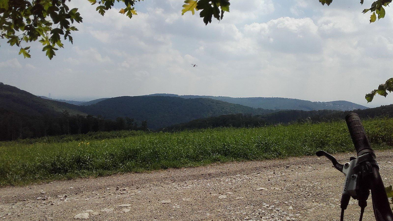 Biosphärenpark-Wienerwald